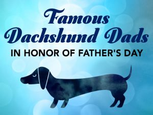 Famous Dachshund Dads in honor of Father's Day